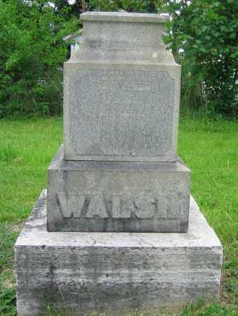 WALSH, HANNAH - Clark County, Ohio | HANNAH WALSH - Ohio Gravestone Photos