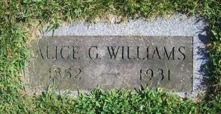 WILLIAMS, ALICE G. - Clark County, Ohio | ALICE G. WILLIAMS - Ohio Gravestone Photos