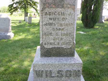 TURNER WILSON, ABIGAIL J. - Clark County, Ohio   ABIGAIL J. TURNER WILSON - Ohio Gravestone Photos