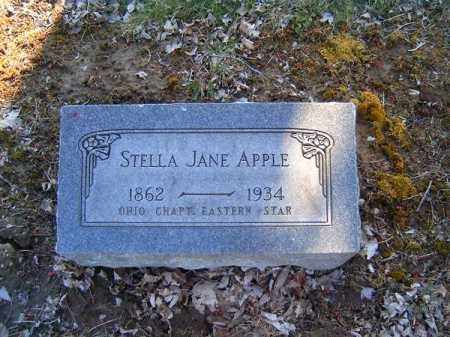 APPLE, STELLA  JANE - Clermont County, Ohio | STELLA  JANE APPLE - Ohio Gravestone Photos