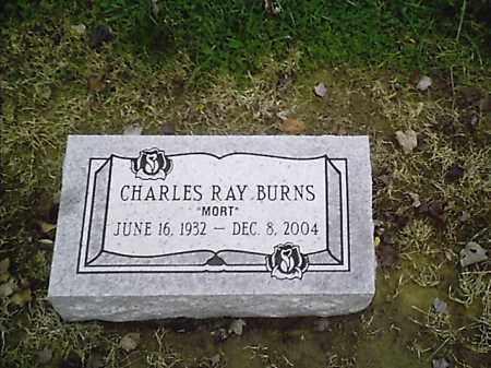 BURNS, CHARLES RAY - Clermont County, Ohio   CHARLES RAY BURNS - Ohio Gravestone Photos