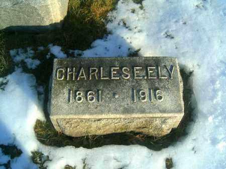 ELY, CHARLES  E - Clermont County, Ohio | CHARLES  E ELY - Ohio Gravestone Photos