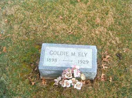 ELY, GOLDIE  M - Clermont County, Ohio | GOLDIE  M ELY - Ohio Gravestone Photos