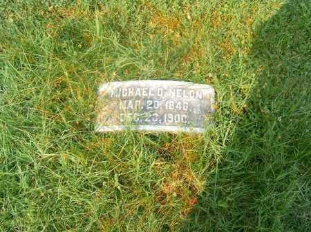 NELON, MICHAEL  O - Clermont County, Ohio | MICHAEL  O NELON - Ohio Gravestone Photos