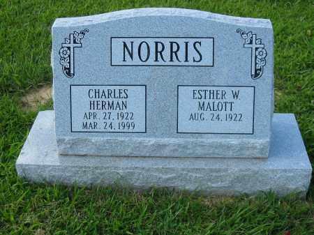 NORRIS, CHARLES HERMAN - Clermont County, Ohio | CHARLES HERMAN NORRIS - Ohio Gravestone Photos