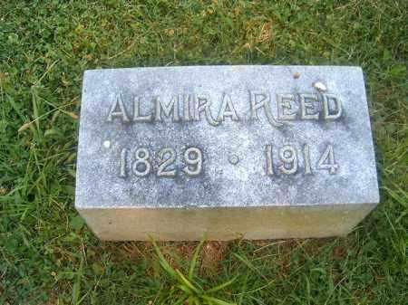 REED, ALMIRA - Clermont County, Ohio | ALMIRA REED - Ohio Gravestone Photos