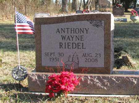RIEDEL, ANTHONY WAYNE - Clermont County, Ohio | ANTHONY WAYNE RIEDEL - Ohio Gravestone Photos