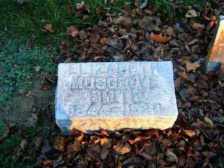 SMITH, ELIZABETH - Clermont County, Ohio | ELIZABETH SMITH - Ohio Gravestone Photos