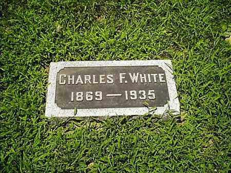 WHITE, CHARLES  F - Clermont County, Ohio | CHARLES  F WHITE - Ohio Gravestone Photos