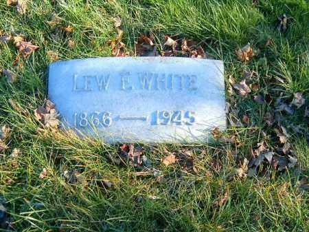 WHITE, LEW  F - Clermont County, Ohio | LEW  F WHITE - Ohio Gravestone Photos