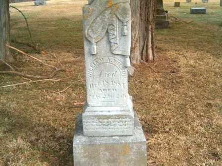 WILSON, WILLIAM   A - Clermont County, Ohio | WILLIAM   A WILSON - Ohio Gravestone Photos