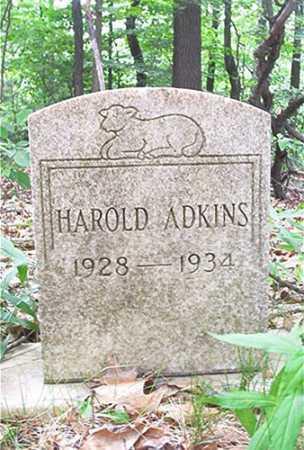 ADKINS, HAROLD - Columbiana County, Ohio | HAROLD ADKINS - Ohio Gravestone Photos
