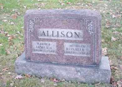 ALLISON, JAMES A. - Columbiana County, Ohio | JAMES A. ALLISON - Ohio Gravestone Photos