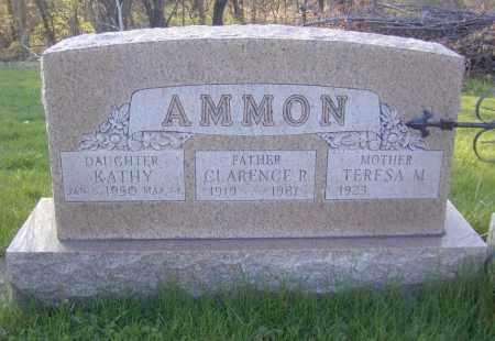 AMMON, TERESA M. - Columbiana County, Ohio | TERESA M. AMMON - Ohio Gravestone Photos