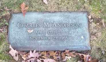 ANDERSON, CHARLES M. - Columbiana County, Ohio | CHARLES M. ANDERSON - Ohio Gravestone Photos