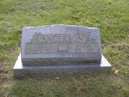 ANDERSON, M. LILLIAN - Columbiana County, Ohio | M. LILLIAN ANDERSON - Ohio Gravestone Photos