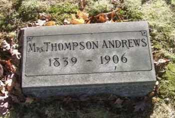 ANDREWS, MRS. THOMPSON - Columbiana County, Ohio | MRS. THOMPSON ANDREWS - Ohio Gravestone Photos