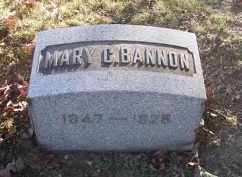 BANNON, MARY C. - Columbiana County, Ohio | MARY C. BANNON - Ohio Gravestone Photos
