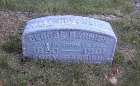 BARNISH, GEORGE - Columbiana County, Ohio | GEORGE BARNISH - Ohio Gravestone Photos