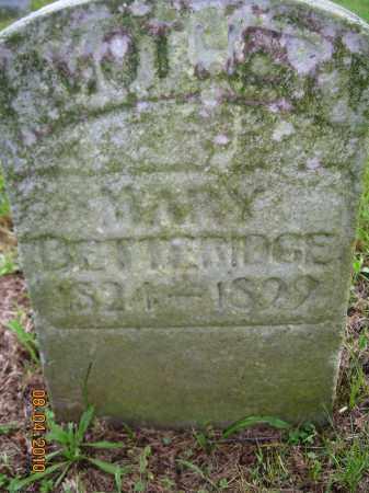 BETTERIDGE, MARY - Columbiana County, Ohio   MARY BETTERIDGE - Ohio Gravestone Photos