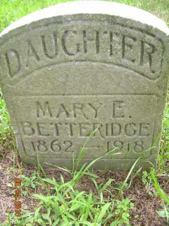 BETTERIDGE, MARY E - Columbiana County, Ohio | MARY E BETTERIDGE - Ohio Gravestone Photos