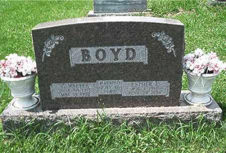 BOYD, C. WALTER - Columbiana County, Ohio | C. WALTER BOYD - Ohio Gravestone Photos