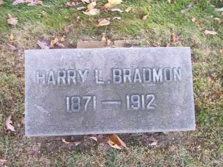 BRADMON, HARRY L. - Columbiana County, Ohio | HARRY L. BRADMON - Ohio Gravestone Photos