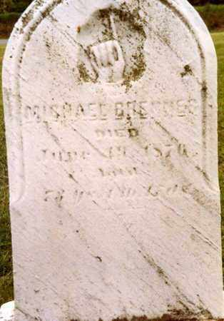 BRENNER, MICHAEL - Columbiana County, Ohio   MICHAEL BRENNER - Ohio Gravestone Photos