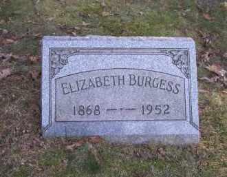 BURGESS, ELIZABETH - Columbiana County, Ohio | ELIZABETH BURGESS - Ohio Gravestone Photos