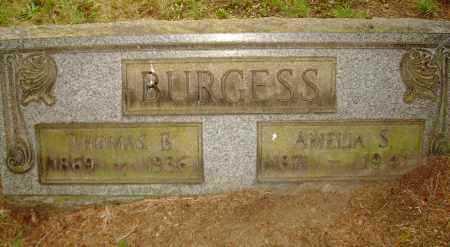 BURGESS, AMELIA S - Columbiana County, Ohio | AMELIA S BURGESS - Ohio Gravestone Photos
