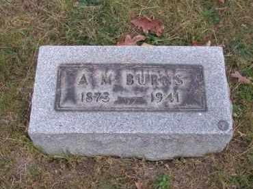 BURNS, A. M. - Columbiana County, Ohio | A. M. BURNS - Ohio Gravestone Photos