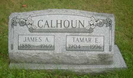 CALHOUN, TAMAR E - Columbiana County, Ohio | TAMAR E CALHOUN - Ohio Gravestone Photos