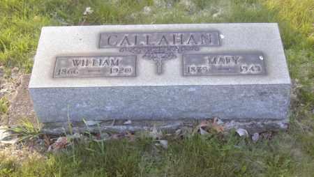 CALLAHAN, WILLIAM - Columbiana County, Ohio | WILLIAM CALLAHAN - Ohio Gravestone Photos