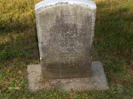 CAMPBELL, MARY - Columbiana County, Ohio | MARY CAMPBELL - Ohio Gravestone Photos