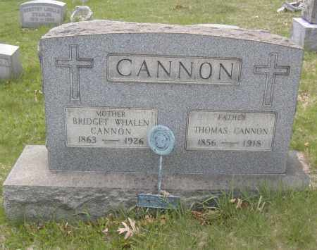 CANNON, BRIDGET WHALEN - Columbiana County, Ohio | BRIDGET WHALEN CANNON - Ohio Gravestone Photos