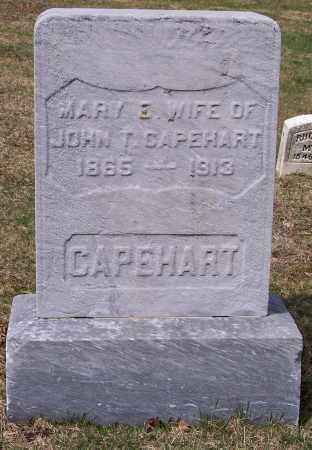 CAPEHART, MARY E. - Columbiana County, Ohio | MARY E. CAPEHART - Ohio Gravestone Photos
