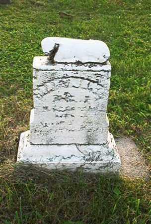 CARSON, MARY JANE - Columbiana County, Ohio | MARY JANE CARSON - Ohio Gravestone Photos