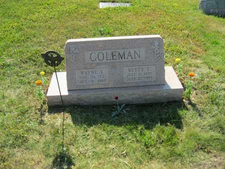 COLEMAN, BETTY EILEEN - Columbiana County, Ohio | BETTY EILEEN COLEMAN - Ohio Gravestone Photos