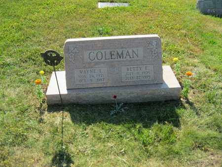 COLEMAN, WAYNE EUGENE - Columbiana County, Ohio   WAYNE EUGENE COLEMAN - Ohio Gravestone Photos