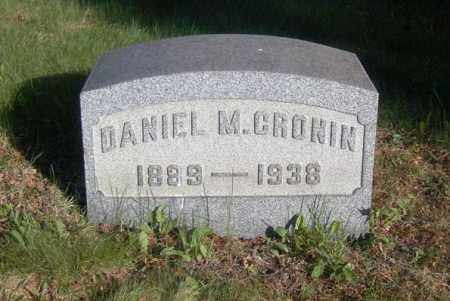 CRONIN, DANIEL M. - Columbiana County, Ohio | DANIEL M. CRONIN - Ohio Gravestone Photos