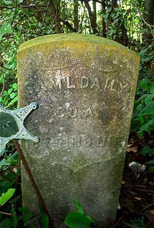 DAILY, SAMUEL - Columbiana County, Ohio | SAMUEL DAILY - Ohio Gravestone Photos
