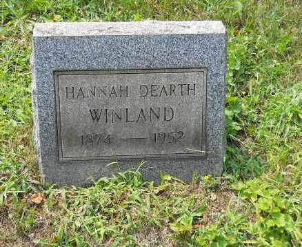 HOOD DEARTH, HANNAH - Columbiana County, Ohio | HANNAH HOOD DEARTH - Ohio Gravestone Photos