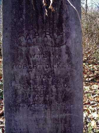 DICKEY, MARY - Columbiana County, Ohio | MARY DICKEY - Ohio Gravestone Photos