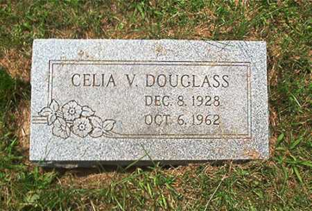 MORRIS DOUGLASS, CELIA V. - Columbiana County, Ohio | CELIA V. MORRIS DOUGLASS - Ohio Gravestone Photos