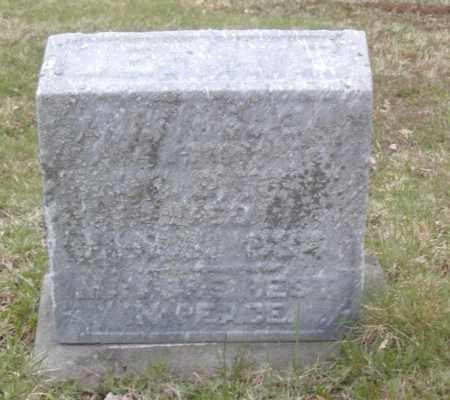 DRABBLE, JENNIE - Columbiana County, Ohio | JENNIE DRABBLE - Ohio Gravestone Photos