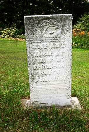 FERGUSON, INFANT - Columbiana County, Ohio | INFANT FERGUSON - Ohio Gravestone Photos