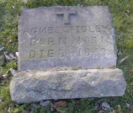 FIGLEY, AGNES - Columbiana County, Ohio | AGNES FIGLEY - Ohio Gravestone Photos
