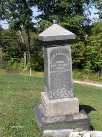 FIRESTONE, DAVID - Columbiana County, Ohio | DAVID FIRESTONE - Ohio Gravestone Photos