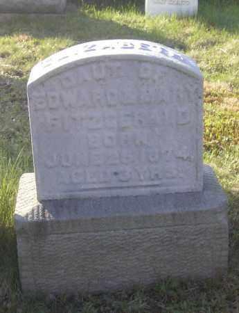 FITZGERALD, ELIZABETH - Columbiana County, Ohio   ELIZABETH FITZGERALD - Ohio Gravestone Photos