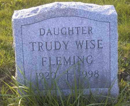 FLEMMING, TRUDY WISE - Columbiana County, Ohio | TRUDY WISE FLEMMING - Ohio Gravestone Photos